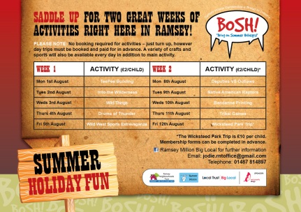 2016 BOSH Double Sided Flyer_BACK (1)